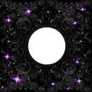purple and black glitters