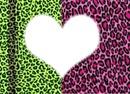 love léopard