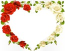 coeur fleur rose rouge blanche