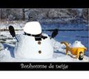 bonhomm de neige