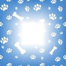 cadre de trace de chien