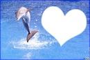 coeur en dauphin
