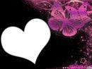 papillon coeur