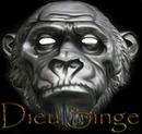 dieu singe