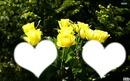 *parfum de fleurs*12*