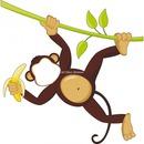 singe avec banane