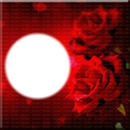 cadre des roses
