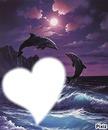 dauphin avec coeur