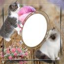 cadre fleuri et chat