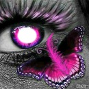 feather butterfly eye