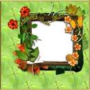 cadre en fleurs