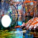 laguna de arboles
