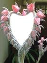 Cc flores corazón