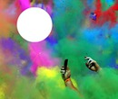 pixiz cadre multicolore