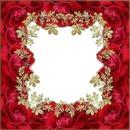 Cadre rouge avec des roses
