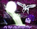 fly like a high my angel