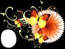Jolis papillons du soleil