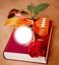 Libro con una rosa y lazo