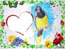 Le géai acahé (oiseau vit en Amérique du sud) dessiné par Gino Gibilaro avec fleurs,coccinelles,papillons