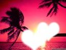 2 coeurs + palmier