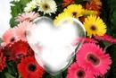 Parfum de fleurs