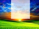 soleil et prairie