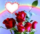 Monalisa Rose