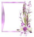 cadre fleurs 4