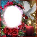 rosas y candela