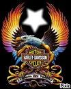 !! Logo HD !!