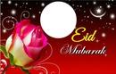 Eid rose