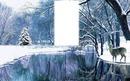 Paysage d'hiver avec neige