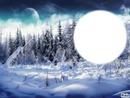 ***l'hiver en montagne***