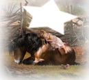 l'enfant et son ami le cheval