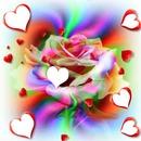 une rose avec des coeurs 6 photos