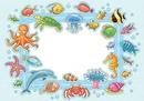 cadre 1 photo animaux de la mer
