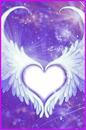 precious wings
