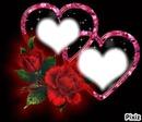 rose et coeur