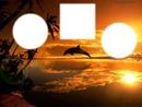 coucher de soleil dauphin