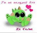 ze t'aime