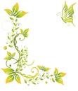 cornice fiori farfalle giallo