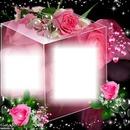 Cubo rosa