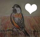 P'tit oiseau dessin fait par Gino GIBILARO