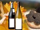 vin et truffes