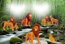 DISNEY LA FAMILLE ROI LION