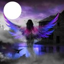 precious purple wings
