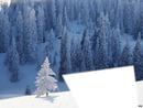 neige paradi