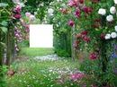 jardim bonito