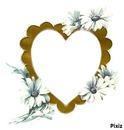 Le coeur aux fleurs blanches