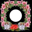 Couronne de fleurs et chatons